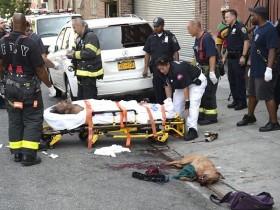 美国一只比特犬撕咬流浪汉 休班的狱警为救人将其击毙