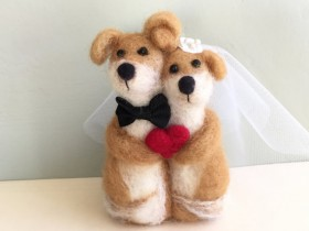 结婚的时候可以加点宠物元素 能让婚礼更有趣
