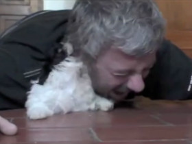 老男人和小狗狗一起趴在地上玩耍 画面很温馨