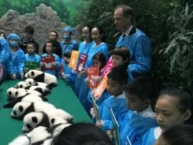 """世界上最""""幸福""""的工作 陪熊猫玩耍就可以拿20万"""