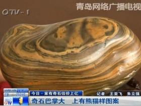 男子捡有熊猫图案的奇石 有人愿意70万购买