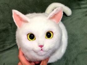 """日本家庭主妇自制""""猫""""包 网友褒贬不一"""