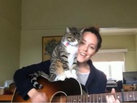 弹着吉他、唱着歌、陪着猫 幸福就是这么简单