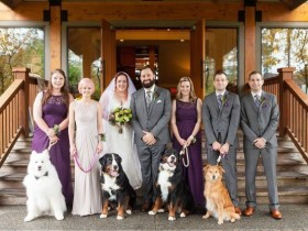 """因为爱狗走到了一起 结婚时4只狗狗""""点燃""""婚礼现场"""