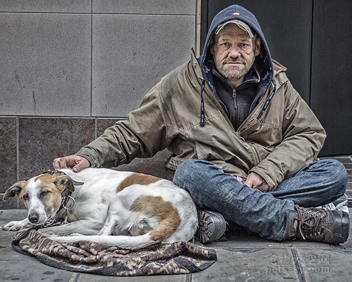 为什么说狗是人类最忠实的朋友?有什么依据吗?