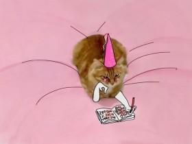 这只猫咪到底招谁惹谁了 竟然引来众多网友PS恶搞