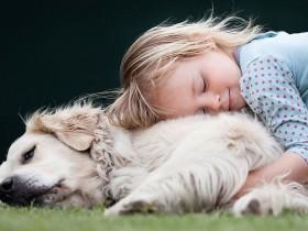 40张孩子与动物在一起的照片 来自世界各地摄影师的作品
