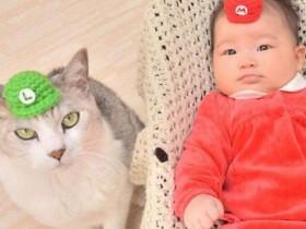 """生下宝宝后不抛弃15岁的猫咪 现在猫咪当起了""""家庭保姆"""""""