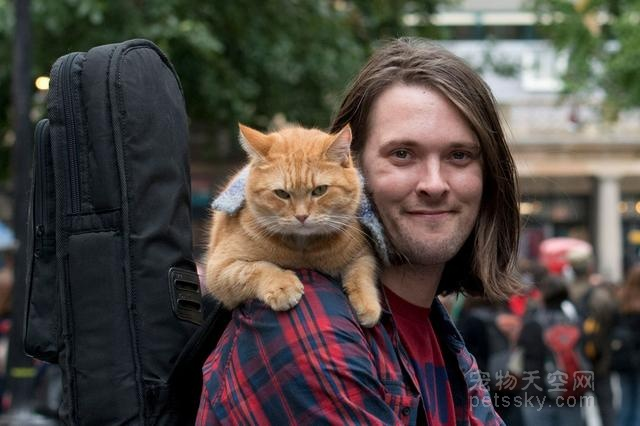 穷困潦倒的街头卖唱者 被一只流浪猫咪彻底改变了命运