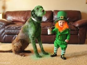 """超有创意的老爸 让宝宝和狗狗进入一个浪漫的""""童话世界"""""""