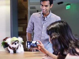 如何让自己的宠物变成网红 国外养宠达人分享成功的经验