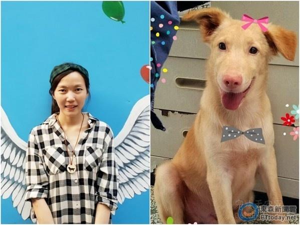 有人在天津收养200多只流浪狗,还为它们做绝育,你怎么看?