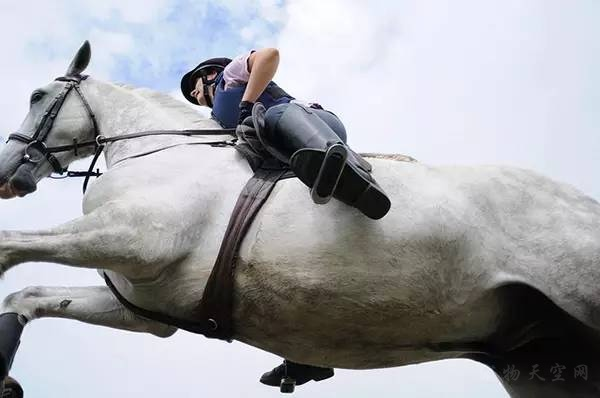 初学骑马者的十大注意事项  简单易懂学会了是自