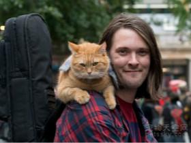 流浪猫改变街头卖唱者命运的故事 已经被拍成了一部电影