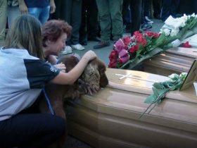 男子不幸死于意大利地震中 狗狗伤心欲绝地不肯离开主人的棺材