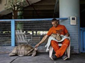 监狱农场里面养了150只动物 狱犯可以拥有一只自己的宠物