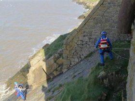 狗狗追海鸥失足跌落悬崖,主人只能给海岸警卫队拨打求助电话