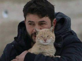 叙利亚男子为照顾流浪猫 放弃逃离战乱的城市