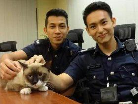 两名警察救了一只猫爆红网络,但走红的原因却跟猫没关系