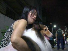 大半夜家里的狗不停大叫,女主人起床后吓得半死