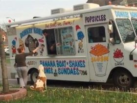 吃货狗狗看见冰激凌车竟然过去排队,路人的做法笑翻主人