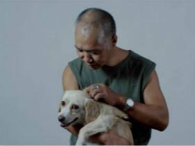 他有房子有家,却住在上海街头,靠捡垃圾救了3000多条流浪狗