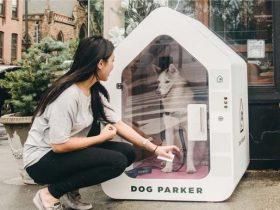 """一款为狗狗们设计的智能安全狗窝""""Dog Parker"""" 不怕丢狗了"""
