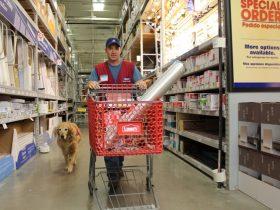 退伍老兵带狗狗在店里一起工作的照片 网上被转发了17万次
