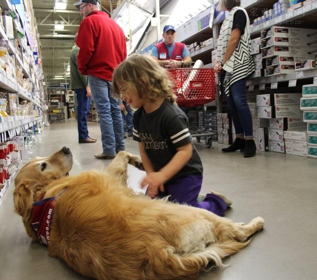 如何帮助自家孩子,学会照顾宠物?孩子与宠物相处技巧