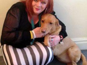英国一宠物狗嗅出主人患乳腺癌 帮助主人早日就诊