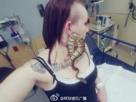 宠物蟒蛇穿过耳洞被卡住 女子被迫求医割耳取蛇