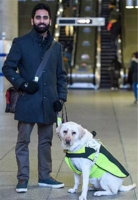 恨狗人士肆意毒杀别人的宠物狗,真的是正义英雄吗?