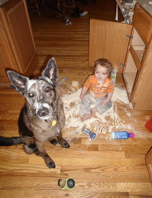 家中养宠物,对孩子学习和身体健康有没有影响?