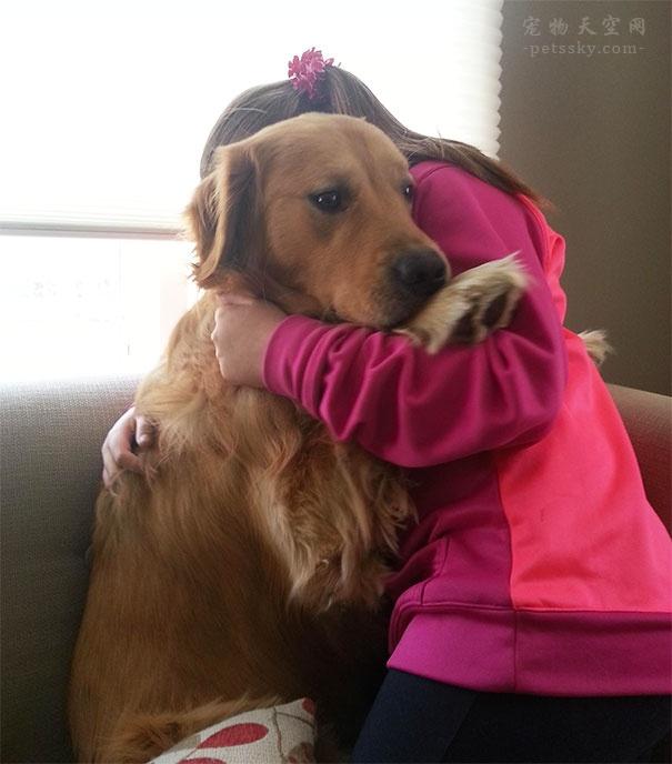 养宠物狗繁事很多,那么有人执意要养?