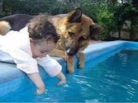打败狗子的不是天真,是天真热!