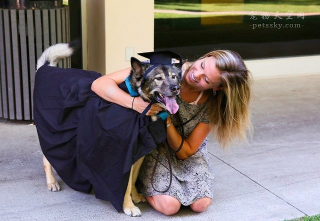 大学宿舍可以养宠物吗?如果可以,养什么宠物好?