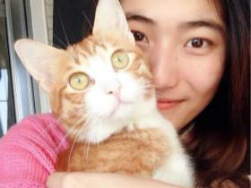 傲娇猫咪,一秒也不愿意离开主人的怀抱