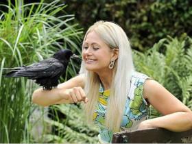 好心地带一只瘦弱的小乌鸦回家,没承想生活彻底被打乱
