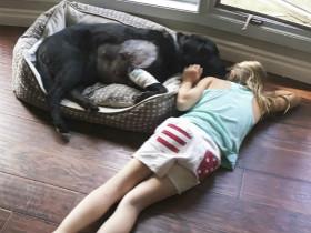 姐姐告诫妹妹有了宝宝不要养狗,妹妹用照片来反驳(12张)