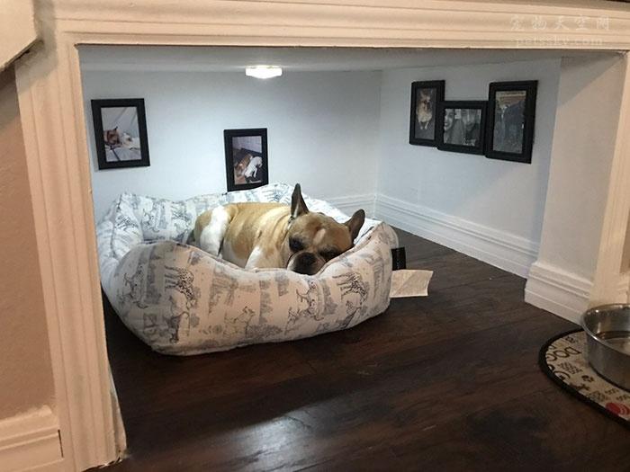 在装修自己家的时候,为狗子单独装建了一个小屋