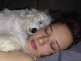 早晨醒来第一眼看到宠物,它们都在做什么?(25张)