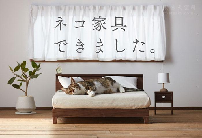 专门为猫咪制作的家具,日本的木匠非常有创意的想法