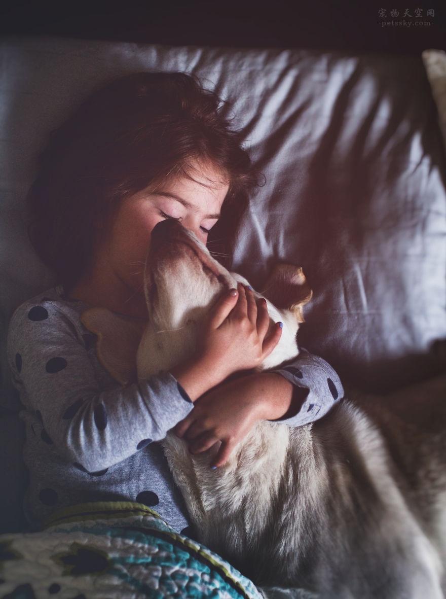 一只狗能给你带来什么?养狗的好处VS养狗的坏处