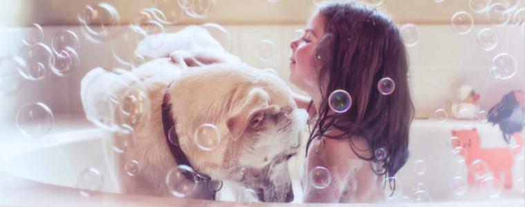 为女儿Mia和狗狗Lucy拍的照片,非常羡慕她们的童年(10张)