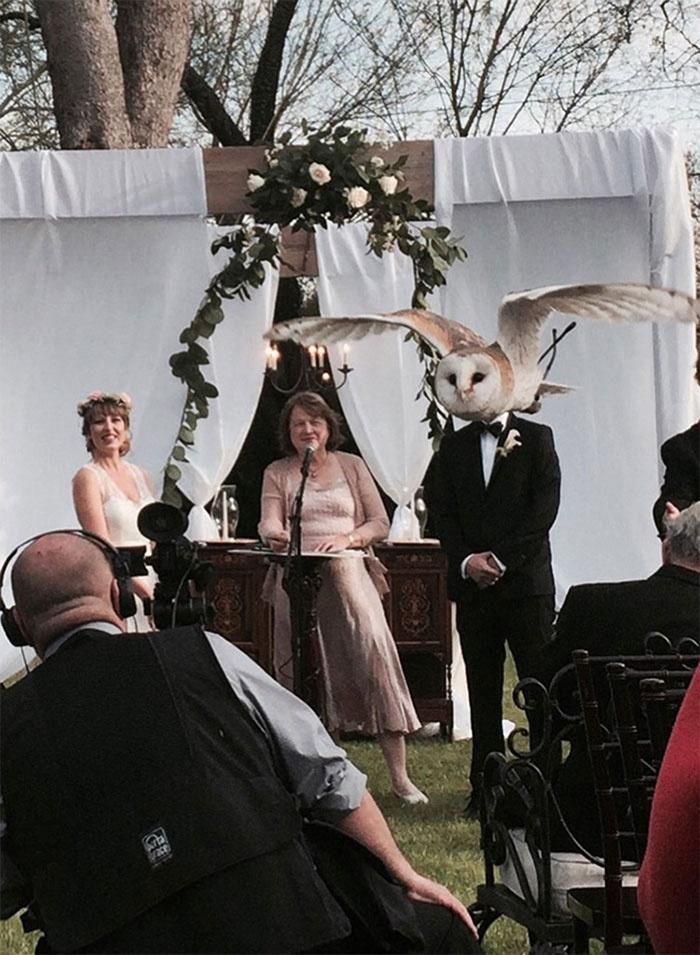 新婚夫妻在拍婚纱照时,遇到了让人啼笑皆非的囧事(27张)
