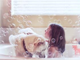 宠物香波如何挑选?你知道如何挑选宠物香波吗?