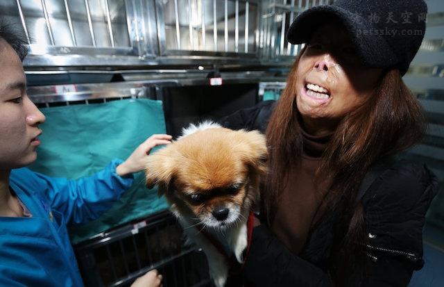 郑州毁容女子卖掉房子后,负债累累,全心全意救助流浪狗