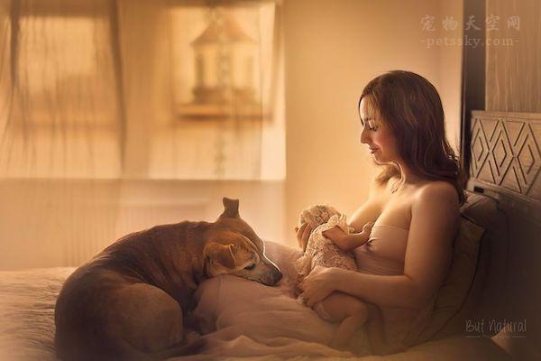 怀孕后能养狗养猫吗?
