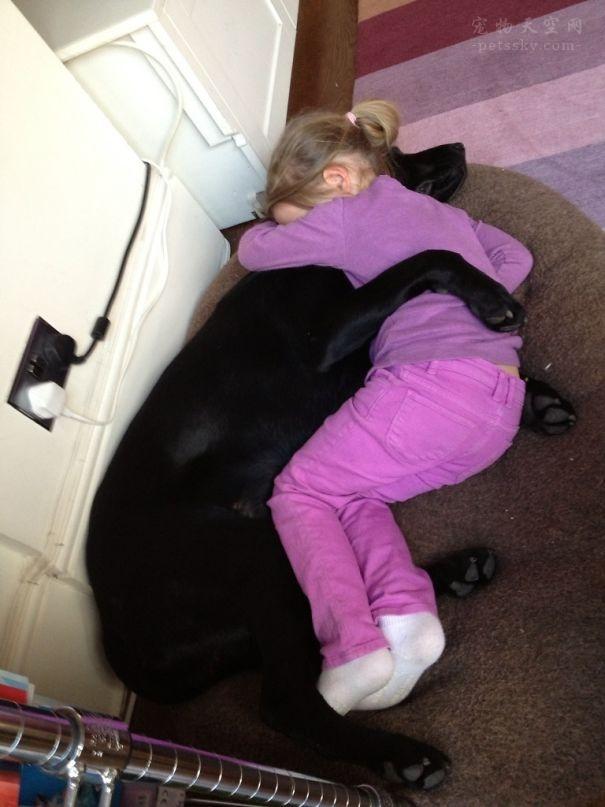 """这些狗狗与孩子一起玩耍的照片,能把多少父母的心""""融化""""?"""