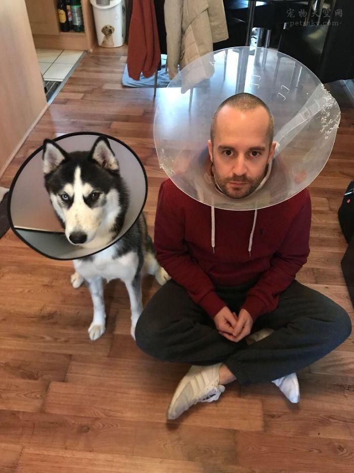 做为优秀的铲屎官,每天会为狗狗做什么事?